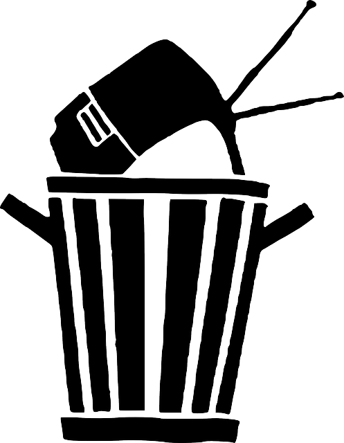 Mülltonne mit Fernseher drin